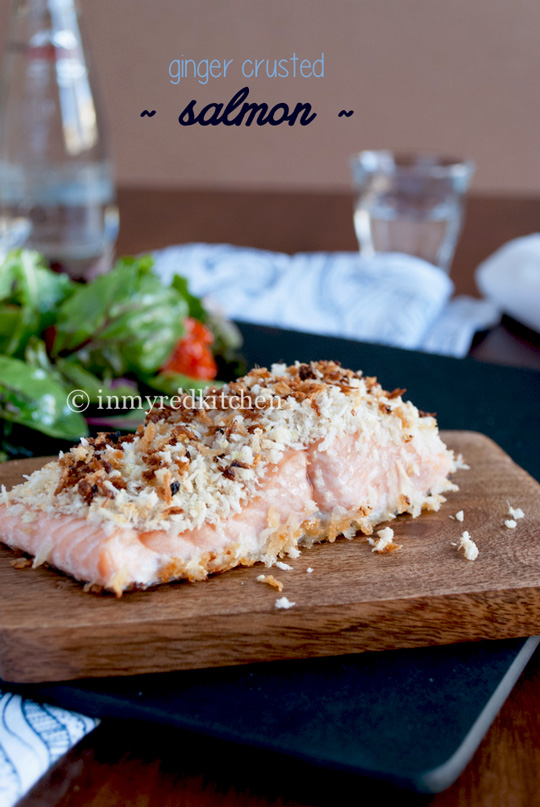 Ginger-crusted-salmon-inmyredkitchen