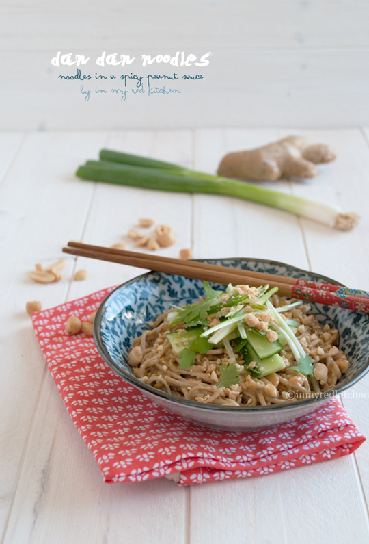 Dan dan noodles, you had me at spicy peanut sauce! | in my Red Kitchen