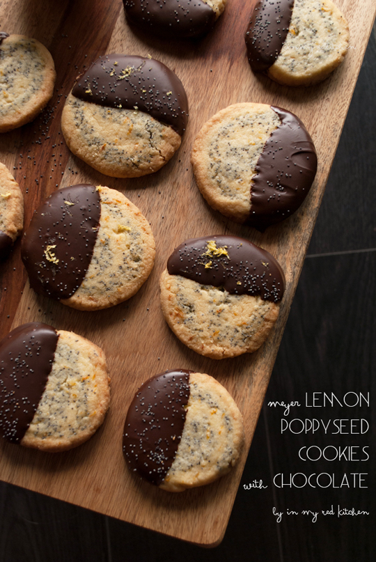Lemon poppy seed cookies with chocolate | in my Red Kitchen